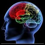 ピアノの練習で育む「音脳」とは①